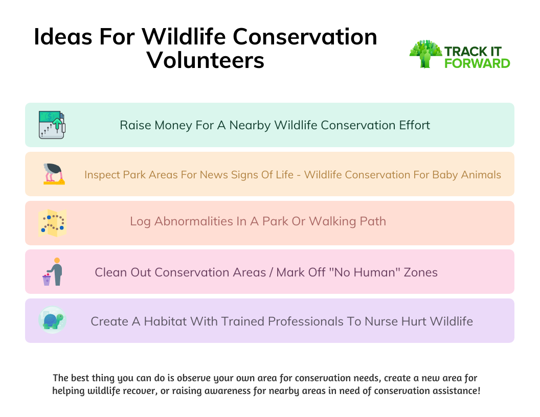 Ideas For Wildlife Conservation Volunteers  Raise Money For A Nearby Wildlife Conservation Effort  Inspect Park Areas For News Signs Of Life - Wildlife Conservation For Baby Animals Log Abnormalities In A Park Or Walking Path  Clean Out Conservation Areas / Mark Off