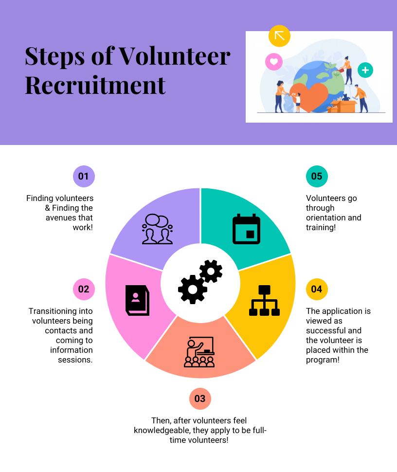 Steps of Volunteer Recruitment   Finding volunteers & Finding the avenues that work!   Transitioning into volunteers being contacts and coming to information sessions.   Then, after volunteers feel knowledgeable, they apply to be full-time volunteers!   The application is viewed as successful and the volunteer is placed within the program!    Volunteers go through orientation and training!